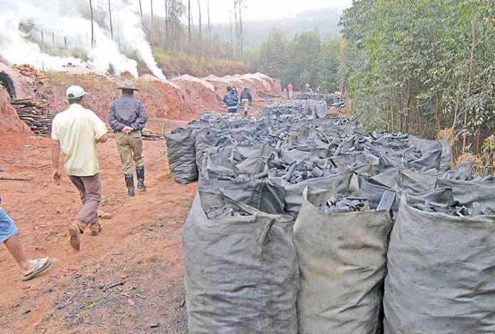 Minas tem mais casos de trabalho escravo no País
