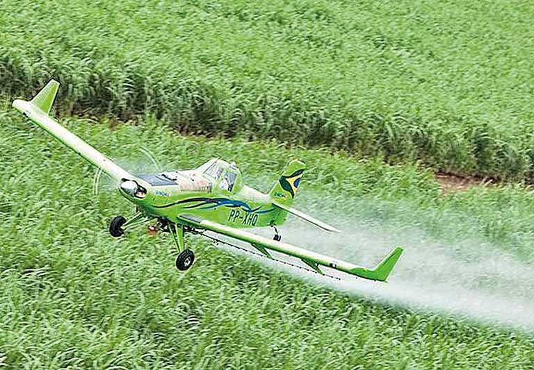 Sistema Campo Limpo diminui risco com agrotóxicos