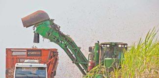 Usinas brasileiras devem ter ano de retomada