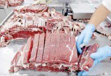 Estados Unidos autoriza importação de carne bovina in natura do País