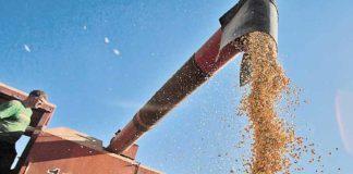 VBP da Agropecuária deve atingir R$ 674 bi no ano