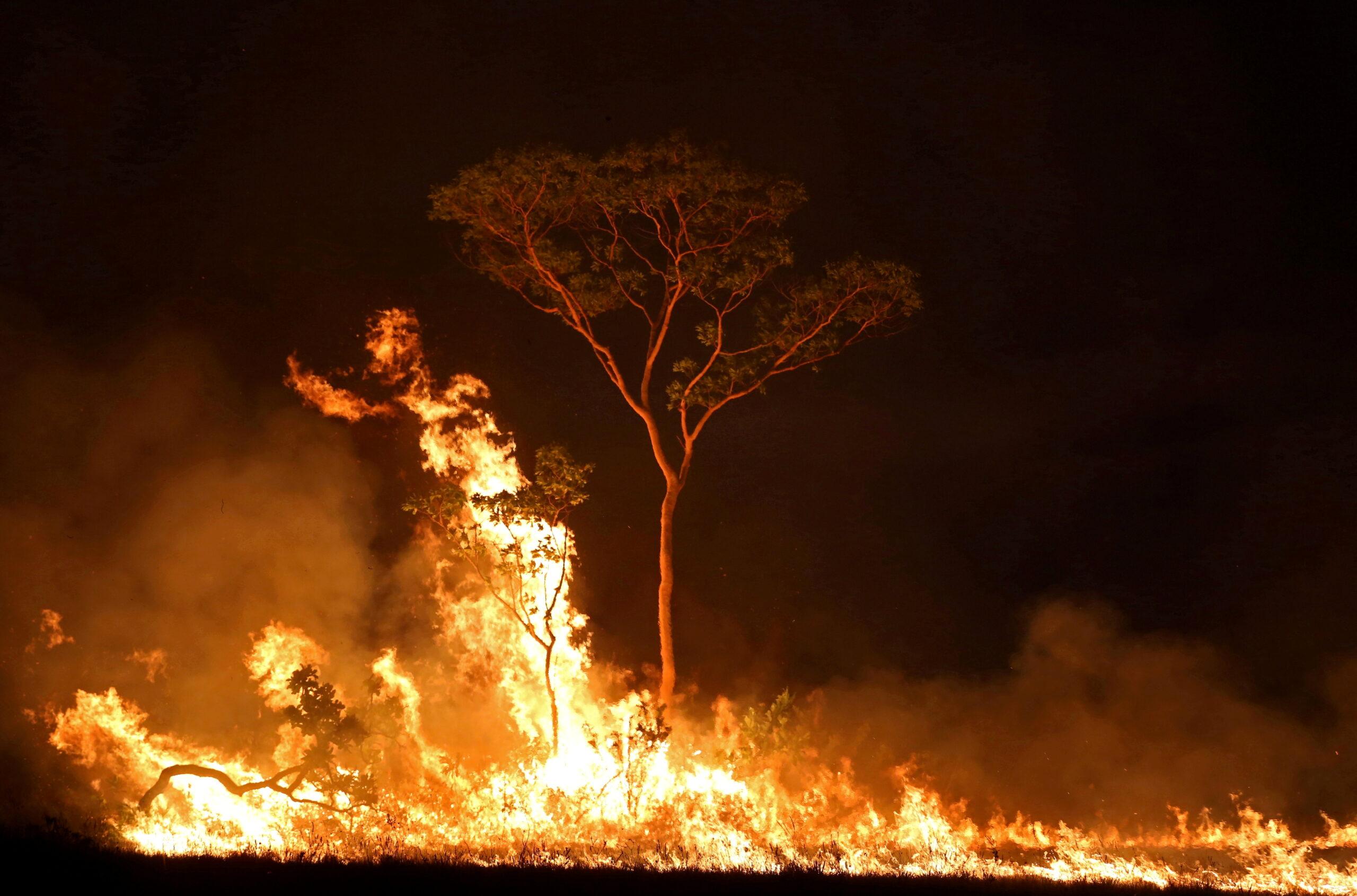 Incêndio em terra indígena no Estado do Amazonas