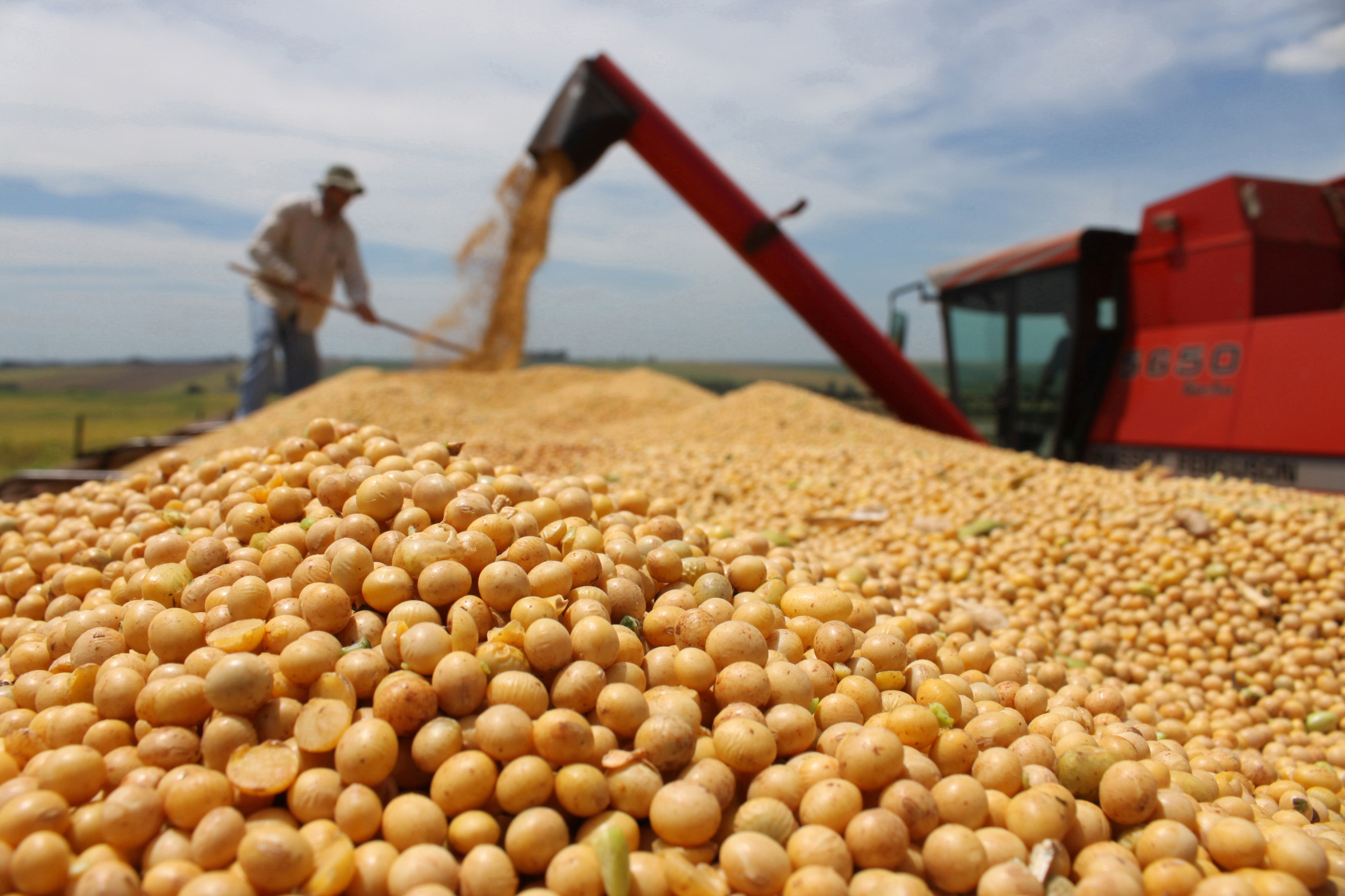 Máquina descarrega colheita de soja