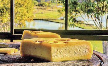 Expectativa de organizadores é receber 800 queijos de 14 países produtores na competição | Crédito: Divulgação/Tereza Boari