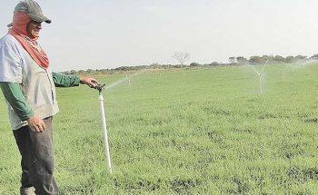 A menor captação de água para irrigação e o custo alto da energia impactam a produção no campo |Crédito: Divulgação