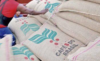 Embarques de café produzido em Minas Gerais movimentaram US$ 2,6 bilhões entre janeiro e agosto, segundo a Seapa | Crédito: Paulo Whitaker/Reuters