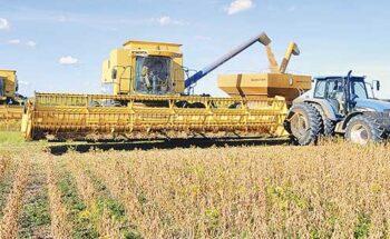 Com valorização no mercado externo, o faturamento da soja pode aumentar 26% | Crédito: Divulgação